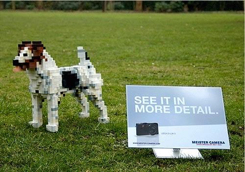 Leica D-Lux 3 | Dog Pixel