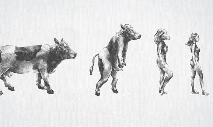 Campanha polêmica compara pessoas obesas a animais