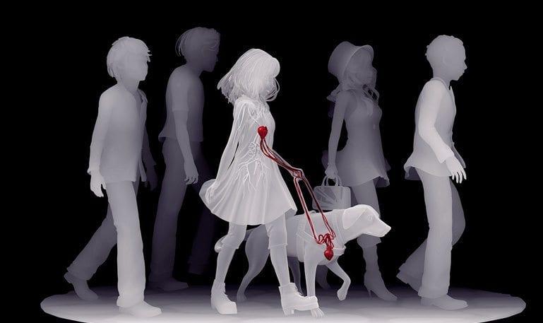 Fundação MIRA mostra ligação única entre cão-guia e pessoa