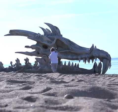 Por que tem uma caveira de Dragão na praia?