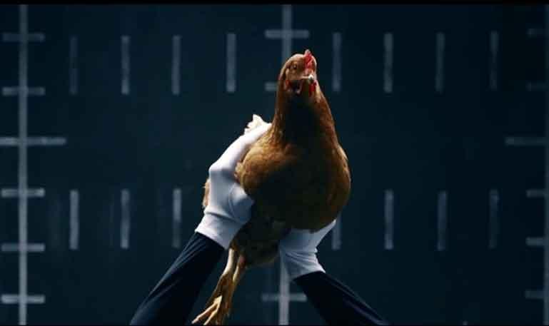 Mercedes-Benz usa galinha para demonstrar tecnologia de estabilização
