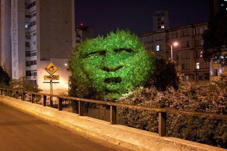 Árvores mostram como se sente vivendo em meio à poluição