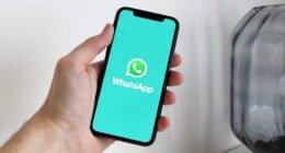 As 10 regras de ouro para o bom convívio nos grupos de WhatsApp