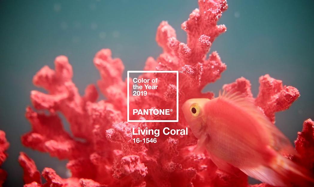 Pantone revela a cor do ano de 2019: Living Coral 16-1546