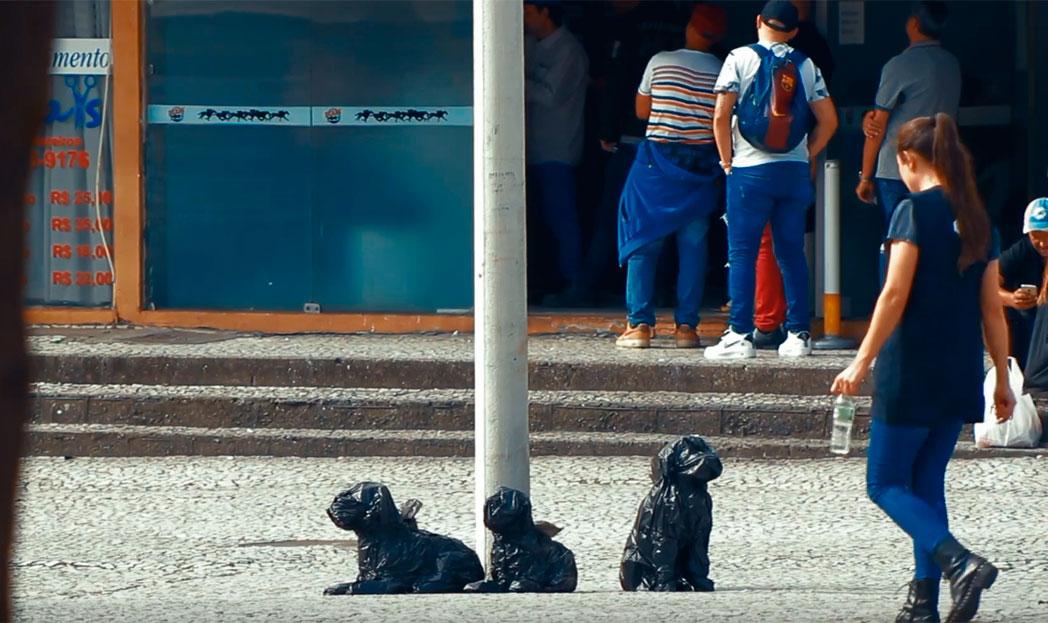 Cachorros feitos de sacos de lixo para alertar sobre o abandono de animais