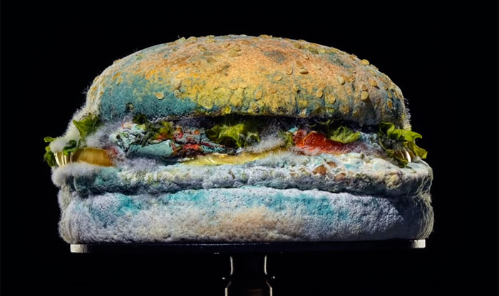 Burger King deixa sanduíche mofar para mostrar que não tem conservantes