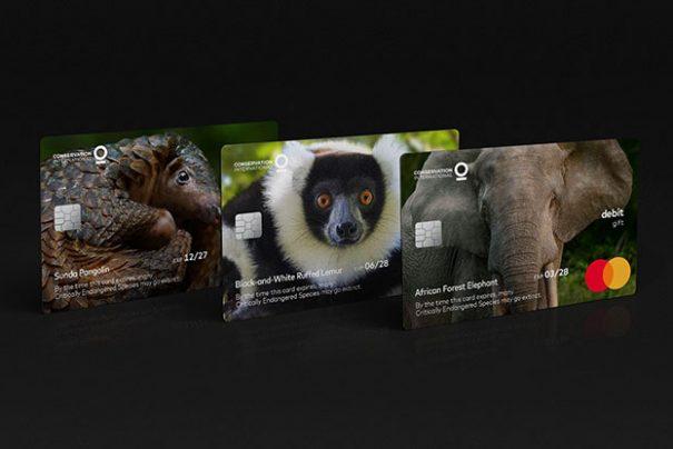Mastercard e seus cartões que ajudam a preservar os animais em extinção
